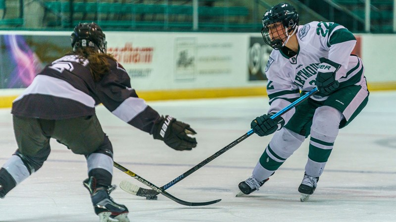 Dartmouth and Brown Skate to 2-2 Tie